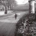 46_2692_Alter Reher Weg. Links ist heute der Reher Hof   1947