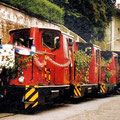 31_623_HKB Lokparade 75 Jahre
