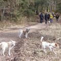Bayerischer Spaziergang, 24. März 2013