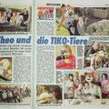 TIKO-Bericht in der Kronen Zeitung am 19. Oktober 2014