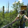 Lusenwanderung im Nationalpark Bayerischer Wald