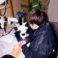 Die Arbeit ist nur mit einem Mikroskop möglich.