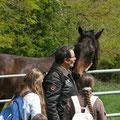 Semallé, terre à chevaux