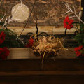 Un Sauveur nous est né : c'est le Christ, le Seigneur