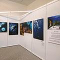 Bilder von Hartwig Becker