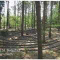 ... im Benediktiner-Kloster Damme bei Osnabrück (Wald-Labyrinth)