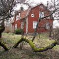 Südost-Seite mit altem Kirschbaum