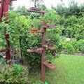 Unser selbstentworfenes und gebautes Bonsai-Regal