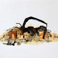 Termitenhügel 6, 34x48 cm