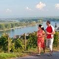 Spaziergänge im Weinberg - Roter Hang in Nierstein (Copyright/Fotograf: Rheinland-Pfalz Tourismus, Dominik Ketz)