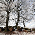 Grabanlage (© Straße der Megalithkultur)