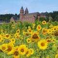 Benediktinerinnen Abtei St. Hildegard © Rüdesheim Tourist AG / Karlheinz Walter