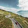 Lavaux bei Epesses im Genferseegebiet © Schweiz Tourismus/Stephan Schacher