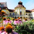 Impressionen aus Ingolstadt: Alte Anatomie und Botanischer Garten