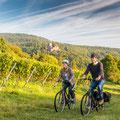 Radfahren in den Weinbergen  © Dominik Ketz, RPT GmbH Zur Verfügung gestellt von Tourismusbüro Bad Bergzabern