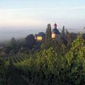 Rheingau, Weingut Schloss Vollrads