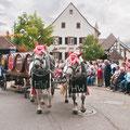 Umzug Winzerfest Auggen © Werbegemeinschaft Markgräflerland GmbH