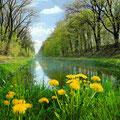 Ludwig-Donau-Main-Kanal © HaVo Hildebrand