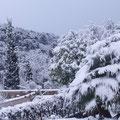 La vallée de Gorbio Février 2010. Photo Paul Couffet