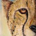 21 - Le guépard - pastel 40x30