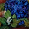 13 - Hortensia bleu - huile 20x20