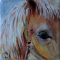 52 - Cheval - huile 10x10