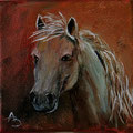 58 - Cheval gris - huile 10x10