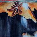 2 - Anis étoilé - aquarelle 31x43