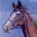 41 - Ulysse - pastel 40x33