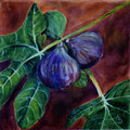 12 - Figues - huile 20x20