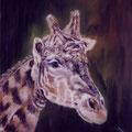 43 - Xanthippe, la girafe - huile sur bois 29x24