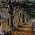 1 - Promenade en forêt - huile 54x65