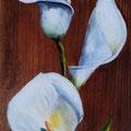 61 - Bouquet d'arums - huile sur bois 60x21
