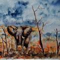 26 - Eléphant africain - aquarelle 30x37