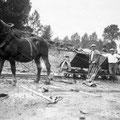 Avant 1940 - Construction du grand étang. Léon Binet, fermier, avec des ouvriers communaux