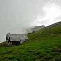 Auf der Alp Sigel