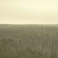 Blick vom Lichtturm bei Nebelwetter