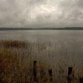 Der Priesterbäker See im Müritz Nationalpark