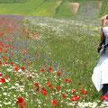Spring at Castellucio