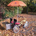 Fun2Go Dreirad für Erwachsene