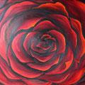 © Die Rose     50x70cm   Ölbild     400€