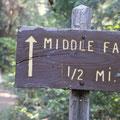 Sign to McCloud River Falls(Middle),なんとなく好きな写真.滝への道もすばらしかったです。