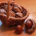 散歩で拾った木の実と、くるみ