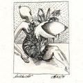 Weiblicher Akt (1999) Tusche auf Papier 21,0 x 29,7