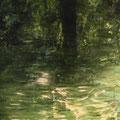 """""""En el agua"""". T. mixtas sobre tela. 90 x 130 cm. 2009."""