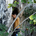 Climbing on height is necessary to get into the cave (team Katsouris cave September  11, 2018).