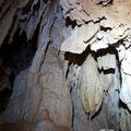 Stalagmites, stalactites and columns.