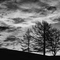 1. Platz Ulrike Emschermann: Wolken