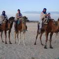 sind auf Kamelen geritten