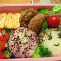 2009.7.29 夕食の残り野菜と冷凍ハンバーグでらくちん。